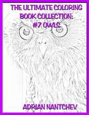 The Ultimate Coloring Book Collection #7 Owls