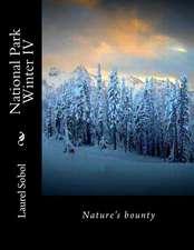 National Park Winter IV