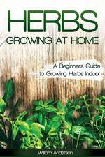 Herbs Growing at Home