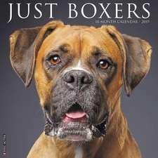 2019 Just Boxers Wall Calendar (Dog Breed Calendar)