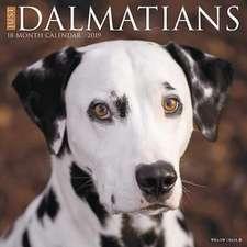 2019 Just Dalmatians Wall Calendar (Dog Breed Calendar)