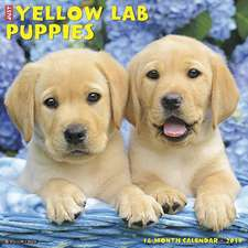 2019 Just Yellow Lab Puppies Wall Calendar (Dog Breed Calendar)