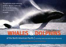 Whales & Dolphins of the North American Pacific:  Including Seals and Other Marine Mammals