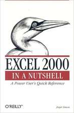 Excel 2000 in a Nutshell – A Power User′s Quick Reference