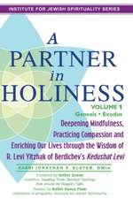 A   Partner in Holiness, Volume 1:  Deepening Mindfulness, Practicing Compassion and Enriching Our Lives Through the Wisdom of R. Levi Yitzhak of Berdi