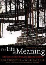 The Life Of Meaning: Reflections on Faith, Doubt and Repairing the World