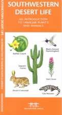 Southwestern Desert Life:  A Folding Pocket Guide to Familiar Plants & Animals