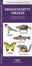 Massachusetts Wildlife:  An Introduction to Familiar Species