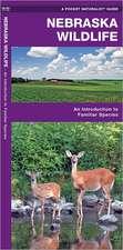 Nebraska Wildlife:  A Folding Pocket Guide to Familiar Species