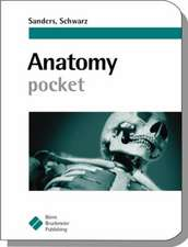 Anatomy Pocket