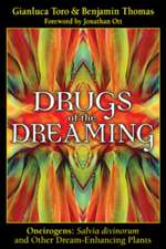 Drugs of the Dreaming:  Salvia Divinorum and Other Dream-Enhancing Plants
