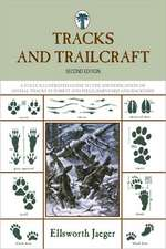 Tracks and Trailcraft