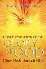 A Divine Revelation of the Glory of God:  I Saw God's Shekinah Glory