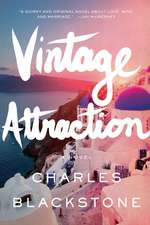 Vintage Attraction – A Novel
