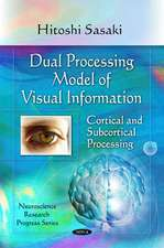 Dual Processing Model of Visual Information