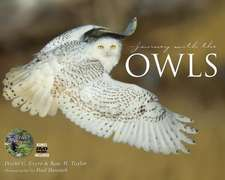 Journey with the Owl:  A Photographic Exploration Through Field & Forest