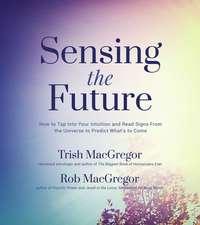 Sensing the Future:  A Field Guide to Precognition