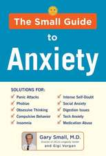 DR SMALL'S GUIDE TO ANXIETY