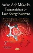 Amino Acid Molecules Fragmentation by Low-Energy Electrons