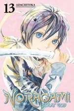 Noragami Volume 13