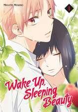Wake Up, Sleeping Beauty 1