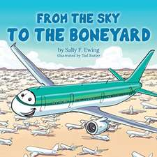 From the Sky to the Boneyard