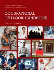 Occupational Outlook Handbook, 2020-2021