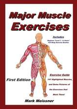 Major Muscle Exercises