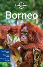 Lonely Planet Borneo:  101 Skills & Experiences to Discover on Your Travels