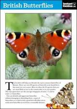 British Butterflies: The Instant Guide