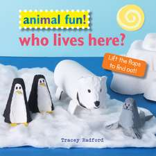 Animal Fun! Who Lives Here?: Lift the flaps to find out!