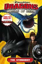 Dragons:  The Stowaway (How to Train Your Dragon TV)
