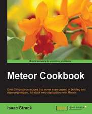 Meteor Web Application Development Cookbook