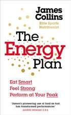 The Energy Plan