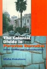 The Colonial Divide in Peruvian Narrative