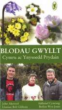 Blodau Gwyllt Cymru ac Ynysoedd Prydain