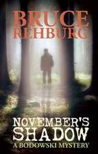 November's Shadow:  A Bodowski Mystery