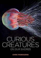 Curious Creatures on Our Shores