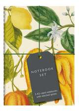 Botanical Art Notebook Set - Lemon, Chillis and Apples