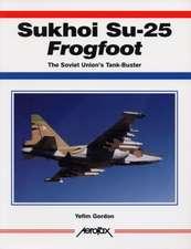 Sukhoi Su-25 Frogfoot:  The Soviet Union's Tank-Buster