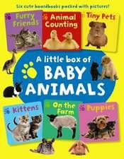 Little Box of Baby Animals