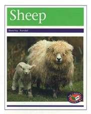 Sheep PM Non Fiction Animal Facts Level 20&21 Farm Animals Purple