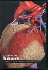 Exploring the Heart: A 3D Overview of Anatomy and Pathology: Published by Primal Pictures Ltd. Exclusive Distribution by Wolters Kluwer Health, Anatomical Chart Company
