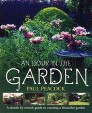 An Hour in the Garden