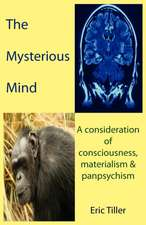 The Mysterious Mind