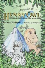 The Magical Adventures of Henry Owl