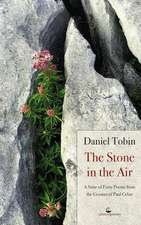 The Stone in the Air