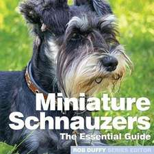 Miniture Schnauzers