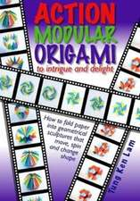 Action Modular Origami
