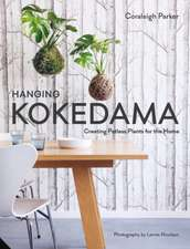 Hanging Kokedama